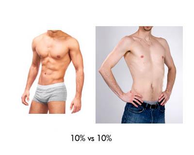 השוואה בין אחוזי שומן